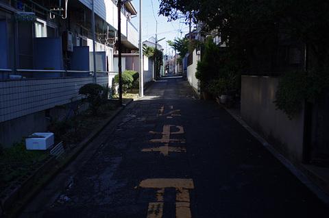 IMGP0467.jpg